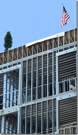 A small fir tree (right) was hoisted Wednesday to the top of the Aloft Hotel to signify that the structure had reached its highest point – 68 feet. (Photo/Melinda Waldrop)