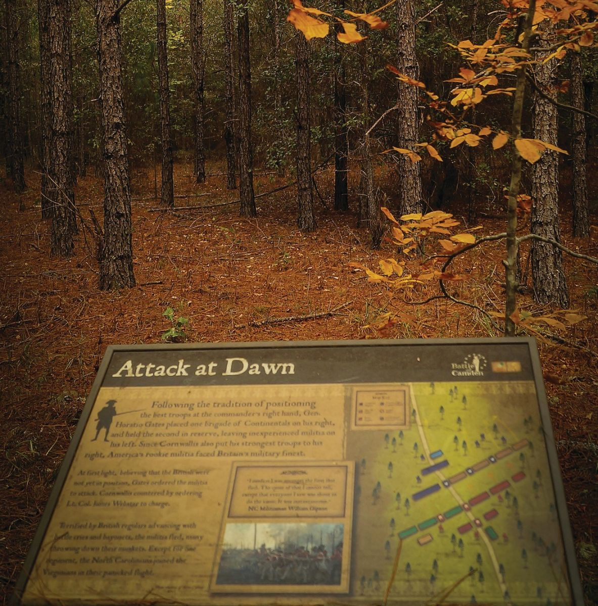 An interpretive sign at Battle of Camden site in Camden, part of the planned Liberty Trail. (Photo/Brian Keeley)