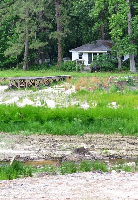 A dock leads out into a bed of silt and weeds just above the Cary Lake dam, destroyed in October's flood.