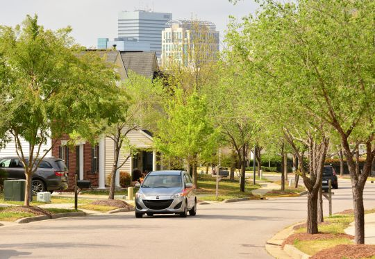 The downtown skyline offers a backdrop to tree-lined Solomon Walker Way, which cuts through the Celia Saxon Neighborhood. The Columbia Housing Authority received a $26 million grant to redevelop a 400-unit barracks style public housing and build 257 affordable housing units. (Photo/Chuck Crumbo)