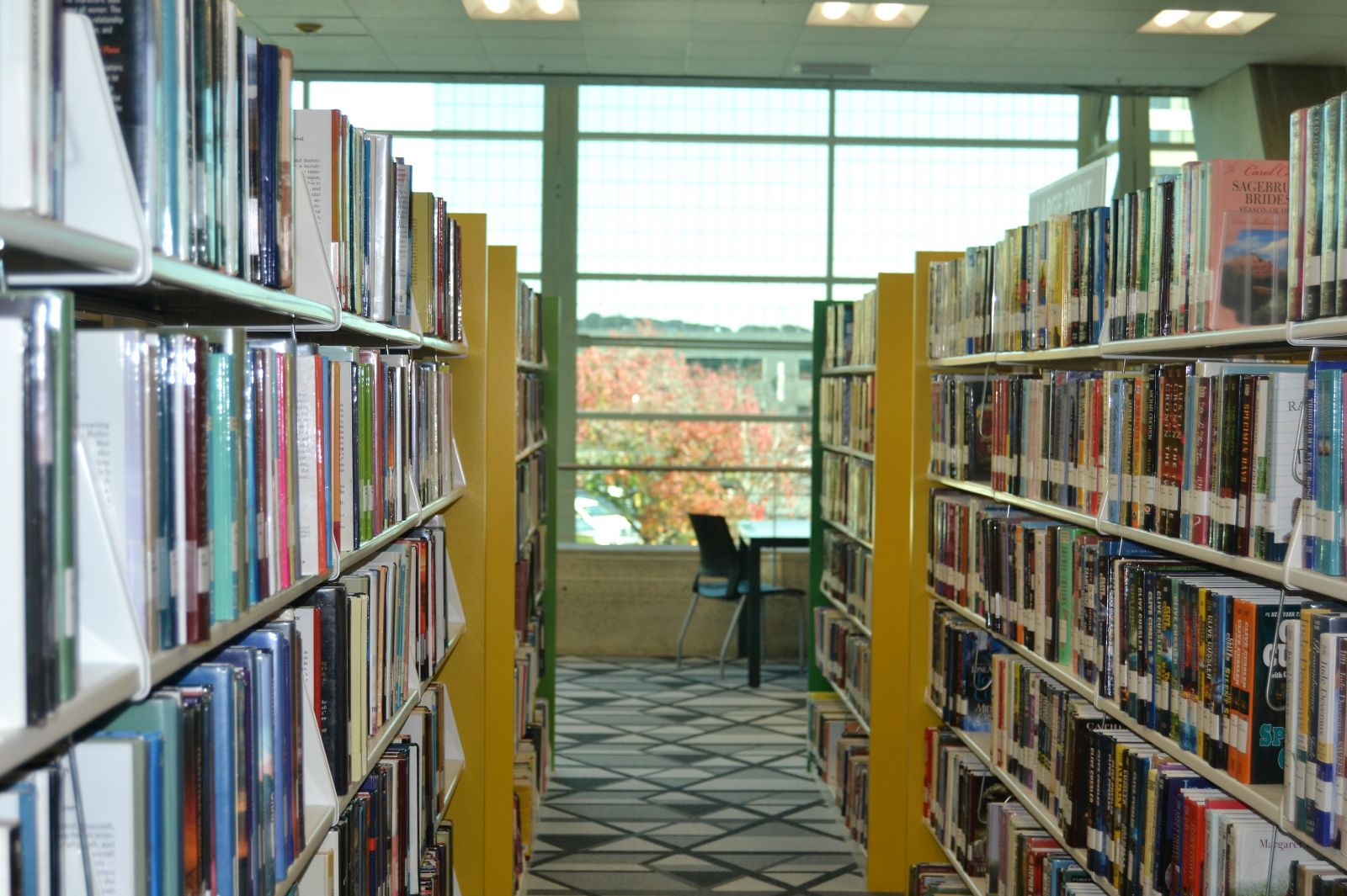 Among the changes made during renovations, stacks of books were moved back to give people more access to the view from the library's windows. (Photo/Melinda Waldrop)